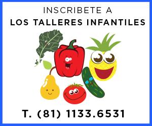banner-ns-talleres