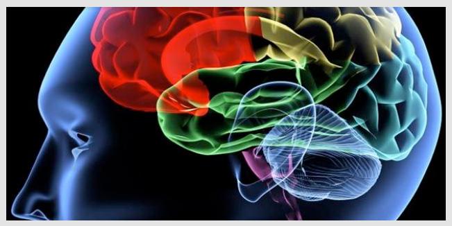 Puede el cerebro ser entrenado para resistir los antojos