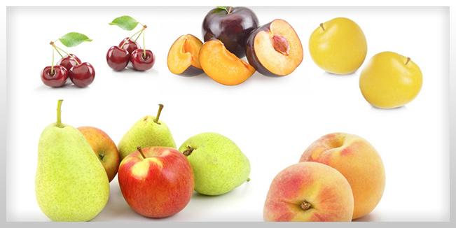 Dieta alta en fructosa en adolescentes exacerba la depresión