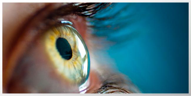 Lo que tus ojos dicen de tu cerebro