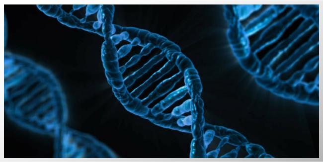 Estudio de genes confirma que niveles bajos de vitamina D, se relacionan con la esclerosis múltiple