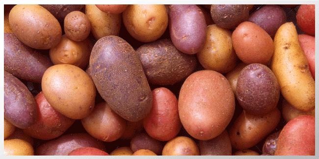 Dieta rica en papas puede aumentar el riesgo de diabetes gestacional