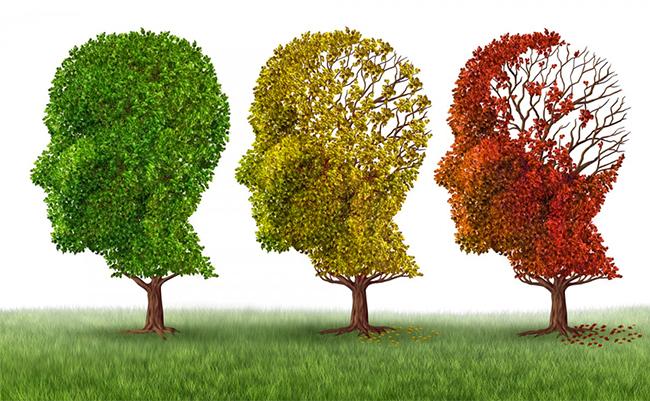 Pautas para la Prevención del Alzheimer