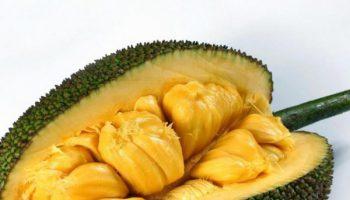 yaka fruta