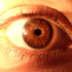 ojo claro